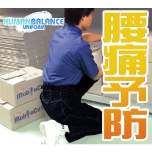 職場や家庭での腰痛予防・緩和に! ヒューマンバランス540 SSS〜6L|carnalead