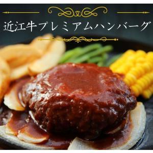 近江牛プレミアムハンバーグデミソース carne-shop