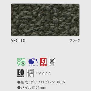 カーペット 6畳 ソフトクリエ江戸間6畳261×352cmレベルループカーペット|carpet-jp|06