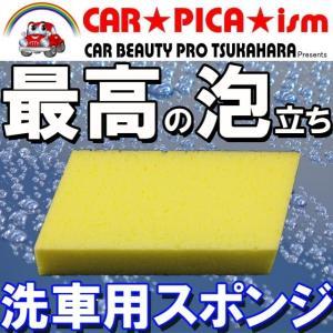 洗車用スポンジ 業務用 シャンプー 鉄粉除去クリーナー 虫 除去 イージーグラスコート carpicaism
