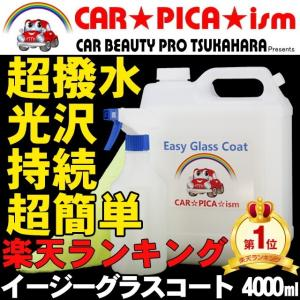 ガラスコーティング剤 業務用 メンテナンス ワックス 車 ボディ コーティング イージーグラスコート