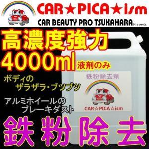 ★限定クーポン★ 鉄粉除去剤 4000ml 濃いから効く P...
