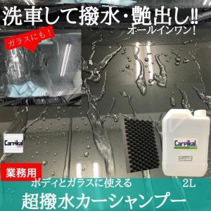 送料無料 コーティング in カーシャンプー 超撥水カーシャンプー2L  [マイクロ洗車スポンジ付き] カーピカル|carpikal360
