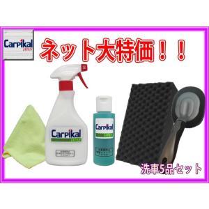 カーピカル 洗車5品セット/脱脂シャンプー100ml タイヤワックス500ml タイヤバフ 洗車用クロス 洗車用スポンジ carpikal360