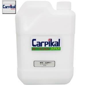 洗車 カーケア用品 下地処理 水あか除去 /業務用 鉄粉除去&水垢取りシャンプー 2L carpikal360