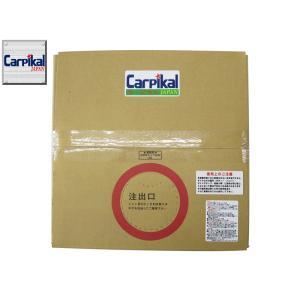 タイヤ保護 【送料無料・業務用 水溶性タイヤワックス20L】スプレー容器付 艶出し WAX |carpikal360