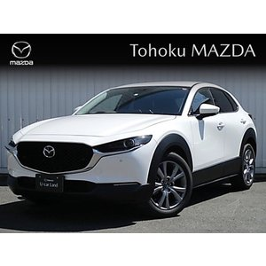 CX-30 XD L PACKAGE BOSEスピーカー付き