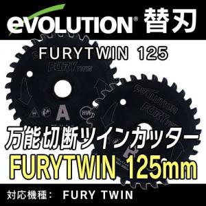 【エボリューション 替刃】 FURY TWIN (フューリーツイン)用 万能切断チップソー2枚セット 125mm 【EVOLUTION】送料無料