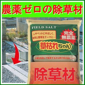 撒くだけ簡単の雑草対策 無農薬 除草材 「草枯れちゃん」5kg casa-i-eterior