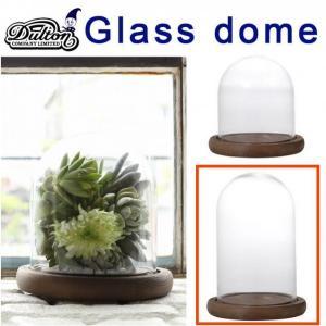 DULTON ダルトン GLASS DOME XSサイズ 発根管理 温室 コーデックス アガベ casa-i-eterior