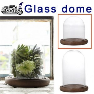 DULTON ダルトン GLASS DOME XXSサイズ 発根管理 温室 コーデックス アガベ casa-i-eterior