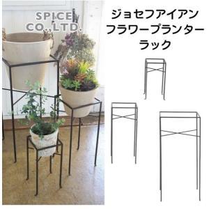 塊根植物 コーデックスに 男前インテリアに アイアン製のプランタースタンド インダストリアルデザイン プランターラック Lサイズ|casa-i-eterior