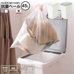 45リットル   ゴミ箱 おしゃれ ごみ箱 ダストボックス RSD-75 WH/GY 抗菌ペール 防...