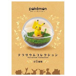 ポケモンテラリウムコレクション 6個入 食玩 ガム  ポケモン