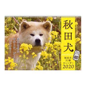 秋田犬  2020年カレンダー 1000109230 壁掛け★アニマルフォト★ [966672] ラ...