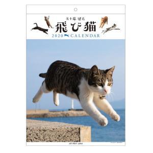 飛び猫  2020年カレンダー 1000109248 壁掛け★アニマルフォト★ [966856] ラ...