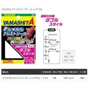 ヤマリア イカメタルアシストリーダー 3−4 ダブル|casting
