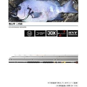 ダイワ 剛心竿 二代目 武蔵504 E|casting