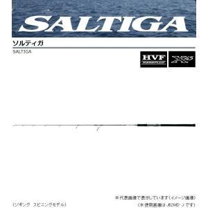 ダイワ ソルティガ (ジギング スピニング) J66MS J...