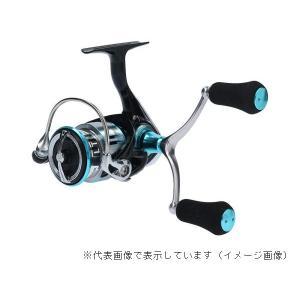 ダイワ  19エメラルダス LT2500S-H-DH casting