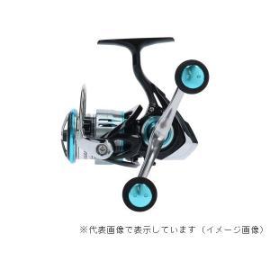 ダイワ  19エメラルダス LT2500S-H-DH casting 04
