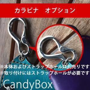 iQOSケース CandyBox専用カラビナオプション catcase