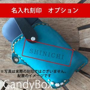 iQOSケース CandyBox専用刻印名入れオプション catcase