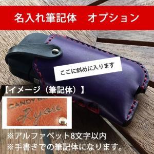 iQOSケース CandyBox専用ハンドライティング筆記体名入れオプション catcase