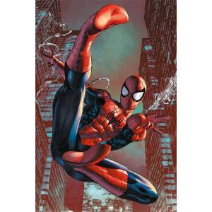 スパイダーマン/ウェブスリング ポスター|catstyle