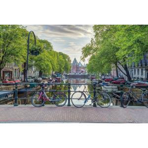 アサフ・フランク アムステルダム ポスター|catstyle