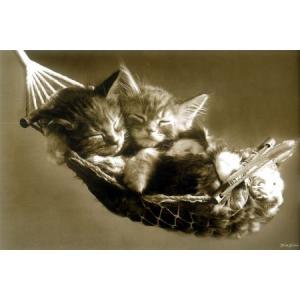 キースキンバーリン ポスター|catstyle