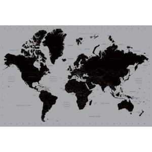 世界地図/シルバー ポスター catstyle