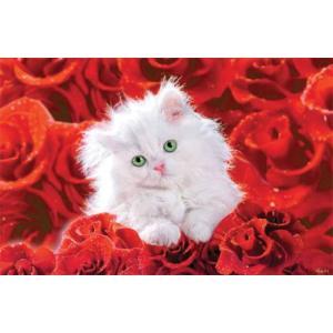 キャット アンド ローズ ポスター|catstyle