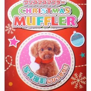 【宅配便配送】ペティオ クリスマス マフラー Mサイズ|cattery-branche