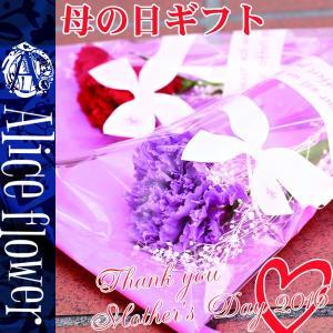 テレビで紹介されました☆ギフト プリザーブドフラワー カーネーション 花束 ブーケ 花 プリザ 1輪 1輪挿し プレゼント ギフト ブリザーブド|cavatina