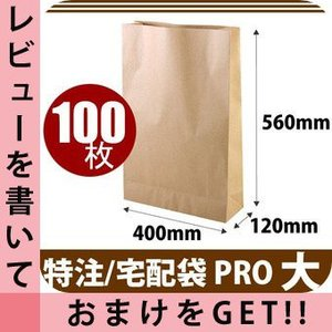 茶袋 宅配クラフト(大) 120g/m・560x400x120(100枚入り)|cavatina