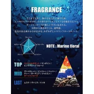 ライジングウェーブ RISINGWAVE 香水 フレグランス メンズ トランスオーシャン オードトワレ スプレー EDT SP 50ml オードトワレ cavatina 04
