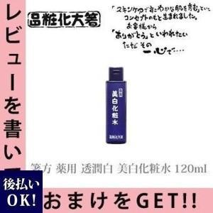 箸方化粧品 薬用 透潤白 美白化粧水 120ml はしかた化...