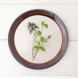 アメ釉 丸皿 25cm 大皿 ワンプレート パスタ皿 陶器 日本製 信楽焼 おしゃれ|cayest