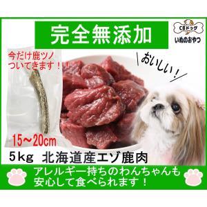 鹿肉【生肉】【犬のおやつ 無添加】【犬のおやつ 鹿肉】【犬のおやつ アレルギー】完全無添加  北海道産 エゾ鹿  アレルギーのあるわんちゃんに 5kg|cbdog
