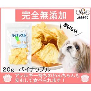 パイナップルチップス【犬のおやつ 無添加】【犬のおやつ 果物】 完全無添加 ノンフライ・ノンオイル ノンシュガー アレルギーのあるわんちゃんに 20g|cbdog