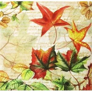 Ambiente オランダ ペーパーナプキン 秋 Autumn Time バラ売り2枚1セット デコパージュ ドリパージュ|ccpopo