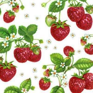Ambiente オランダ ペーパーナプキン Strawberry Plant 13306770 バラ売り2枚1セット デコパージュ ドリパージュ|ccpopo