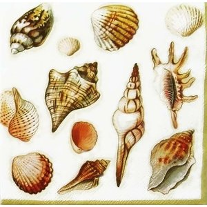 Ambiente オランダ ペーパーナプキン Shells cream 13306865 バラ売り2枚1セット デコパージュ ドリパージュ|ccpopo