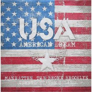 Ambiente オランダ ペーパーナプキン アメリカンドリーム AMERICAN DREAM 13307850 バラ売り2枚1セット デコパージュ ドリパージュ|ccpopo