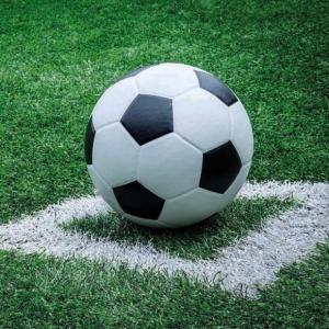 Ambiente オランダ ペーパーナプキン サッカーボール Football 13309360 バラ売り2枚1セット デコパージュ ドリパージュ|ccpopo