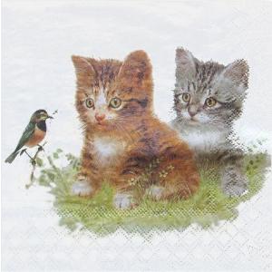 Ambiente オランダ ペーパーナプキン 猫 Kitten Friend 13310170 バラ売り2枚1セット デコパージュ ドリパージュ|ccpopo