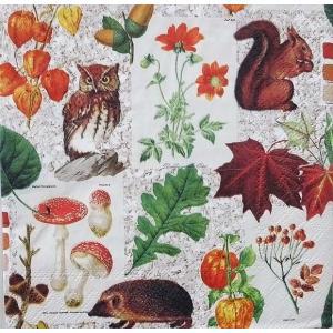Ambiente オランダ ペーパーナプキン 秋 Autumn Classic 13311060 バラ売り2枚1セット デコパージュ ドリパージュ|ccpopo