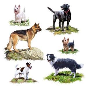 Ambiente オランダ ペーパーナプキン かわいい犬達 Dogs 13311580 バラ売り2枚1セット デコパージュ ドリパージュ|ccpopo