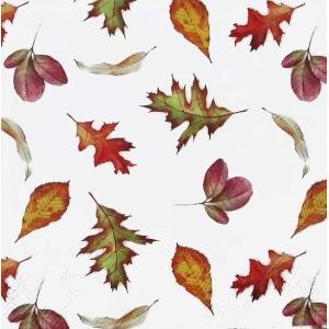 Ambiente オランダ ペーパーナプキン 秋の落ち葉 Falling Leaves バラ売り2枚1セット デコパージュ ドリパージュ 13312370|ccpopo